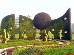Topiary Photos